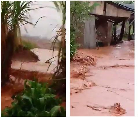 cianorte estrada da bica Propriedades são inundadas