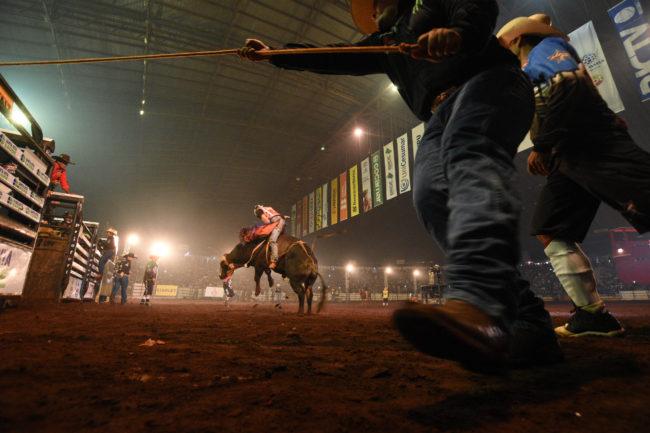 Montaria em Touro 4 e1525882729279 Expoingá recebe maior campeonato de montarias em touros do mundo, a partir desta sexta
