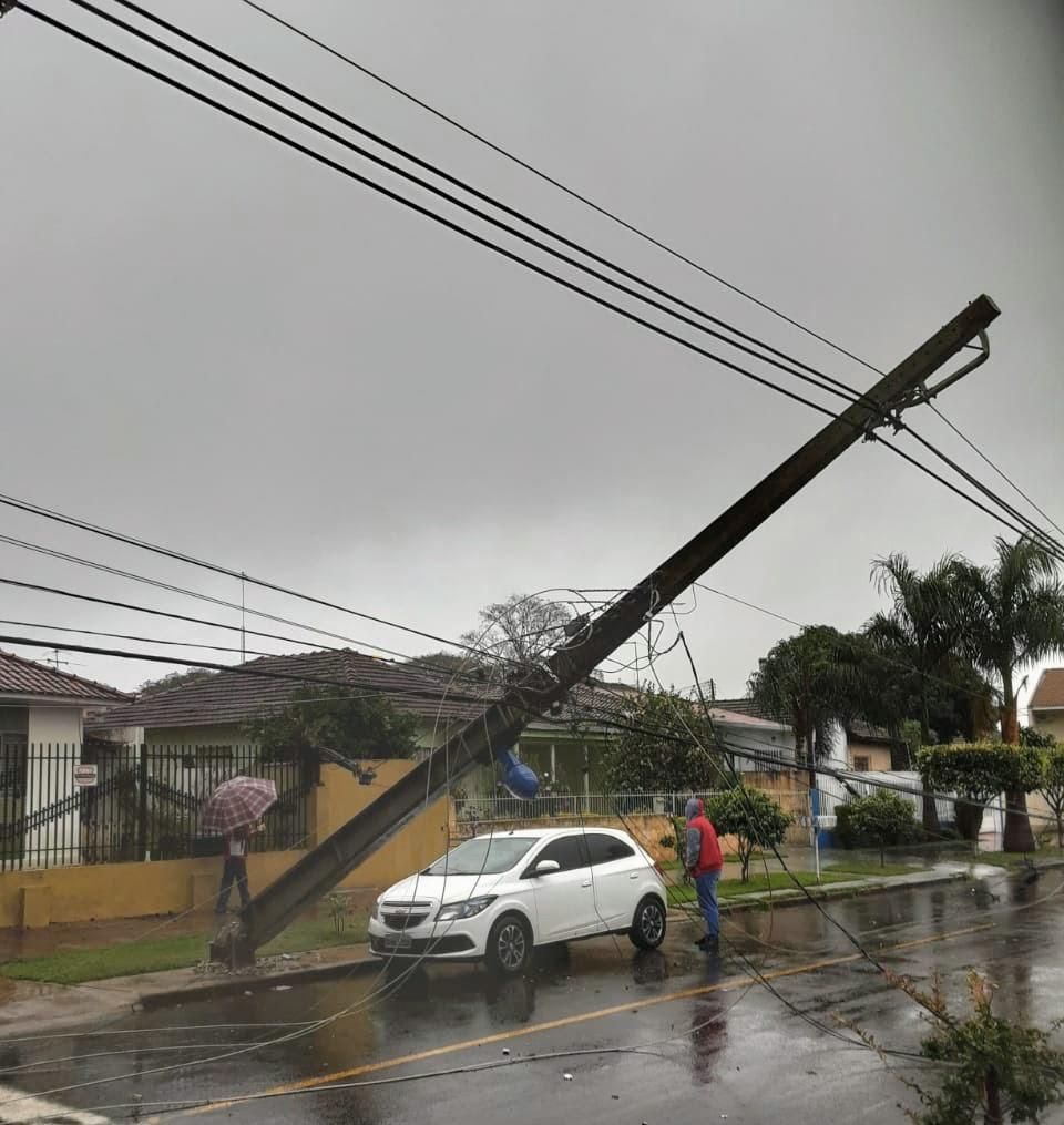 Foto de Quedas de árvores causam prejuízos em Maringá